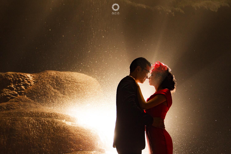 Image : Dancing in the Moonlight