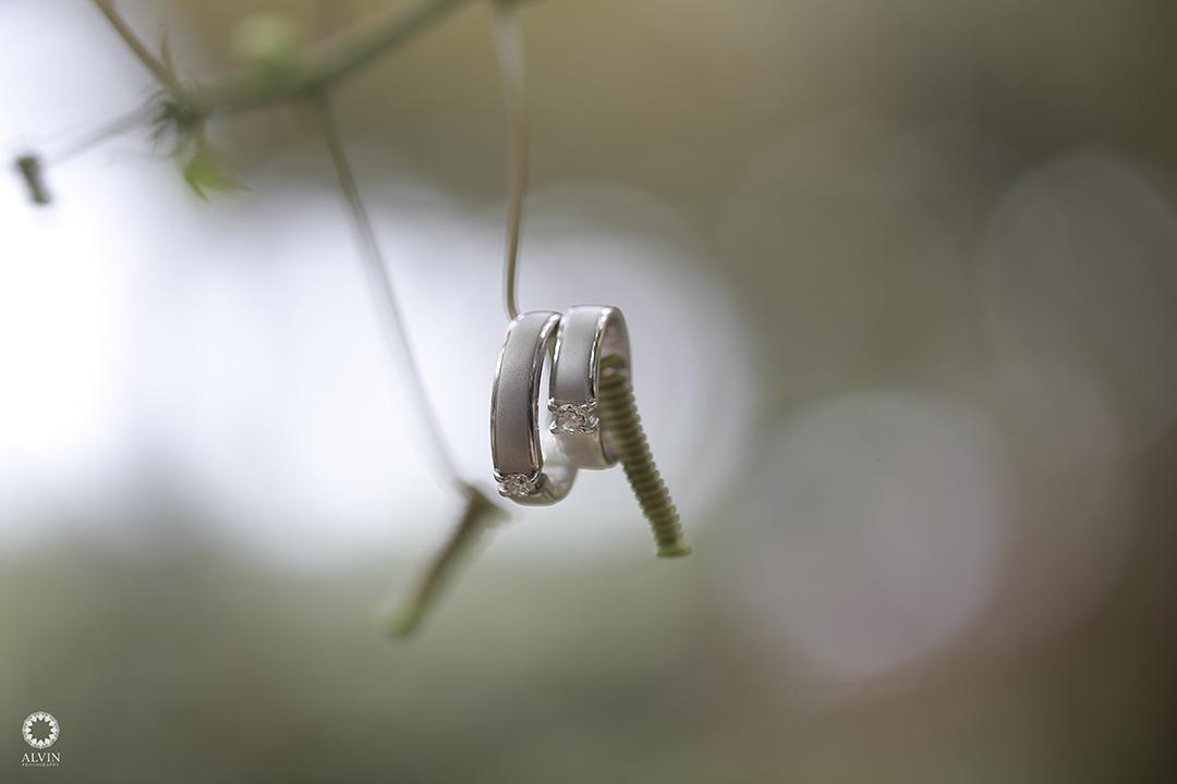IMG 0341 : Tips Memilih Cincin Pernikahan